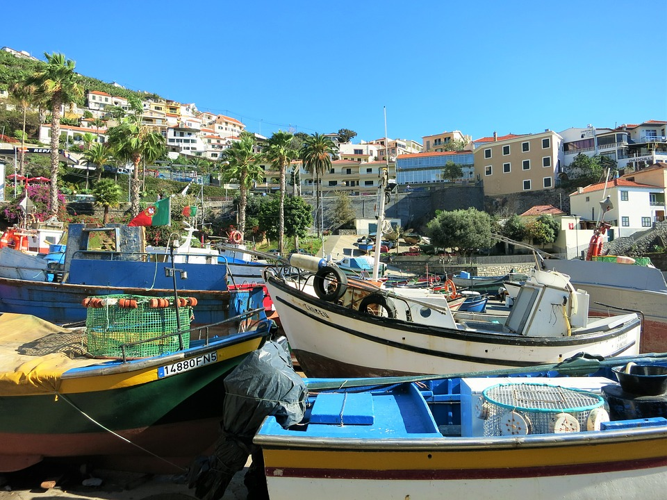 http://www.travelsys.sk/public/users/paxtour/images/fotogaleria_hotel/l_madeira_zahrada_1.jpg