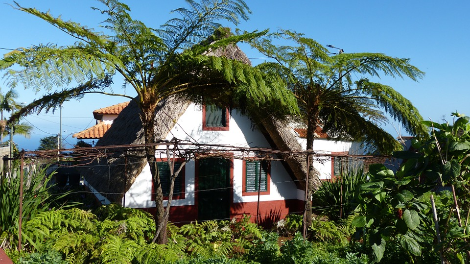 http://www.travelsys.sk/public/users/paxtour/images/fotogaleria_hotel/l_madeira_zahrada_4.jpg