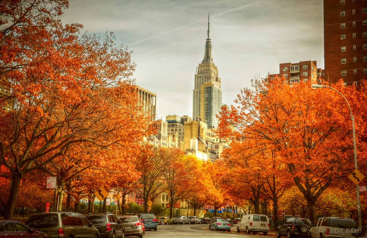 http://www.travelsys.sk/public/users/paxtour/images/fotogaleria_hotel/l_new_york_02.jpg